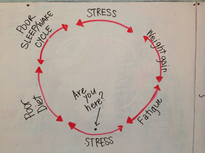 Break the Perpetual Cycle of Stress