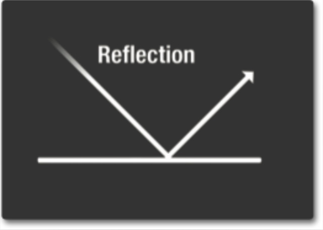 Recognize the Reflection