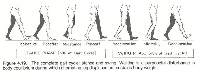 Day 96 of 100 – Single Leg Skills.